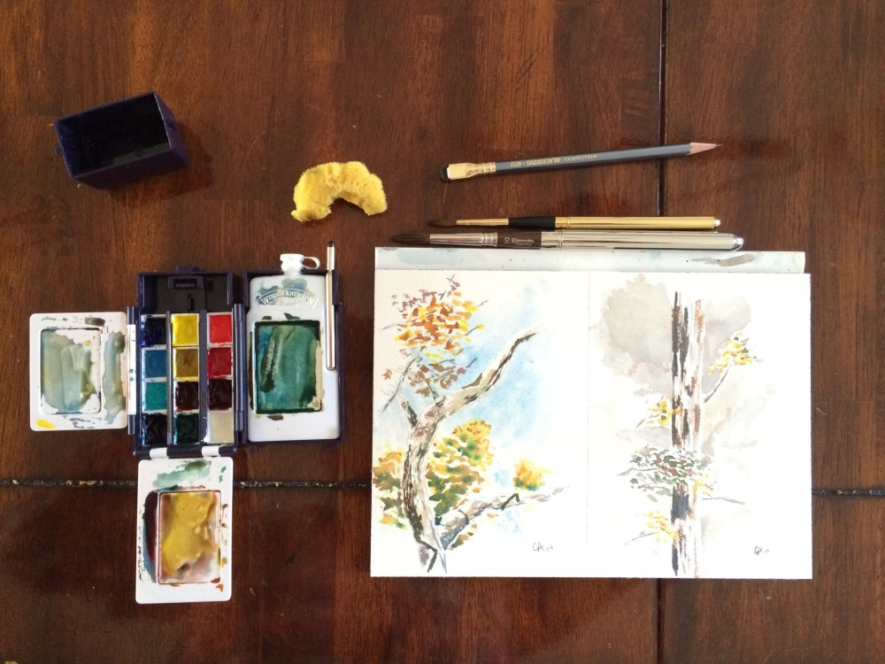 Another tree study and a review of the Escoda Versatil (1/2)